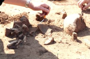 The bones indicate that the dead all had the same injuries -- as if they had all been butchered like livestock. Archaeologists suspect that the corpses of Herxheim were eaten.