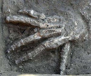 A severed right hand discovered in front of a Hyksos palace at Avaris (modern-day Tell el-Daba). It would have been chopped off and presented to the king (or a subordinate) in exchange for gold. This discovery is the first archaeological evidence of the practice. At the time they were buried, about 3,600 years ago, the palace was being used by King Khayan. The Hyksos were a people believed to be from northern Canaan, they controlled part of Egypt and made their capital at Avaris on the Nile Delta