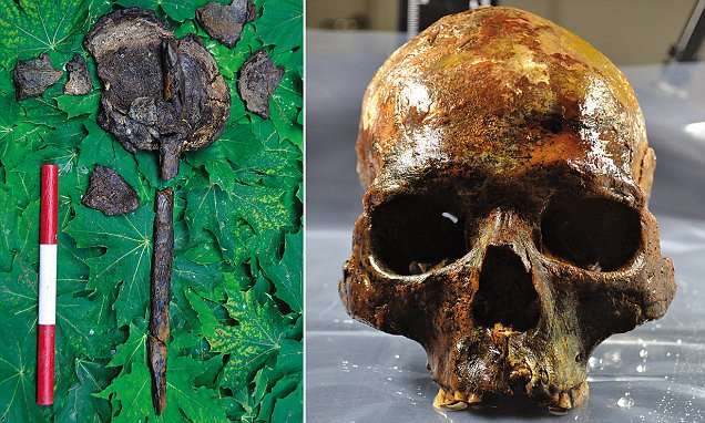 Human Skulls Mounted on Stakes Found at 8,000-Year-Old Burial Archaeological Site in Sweden