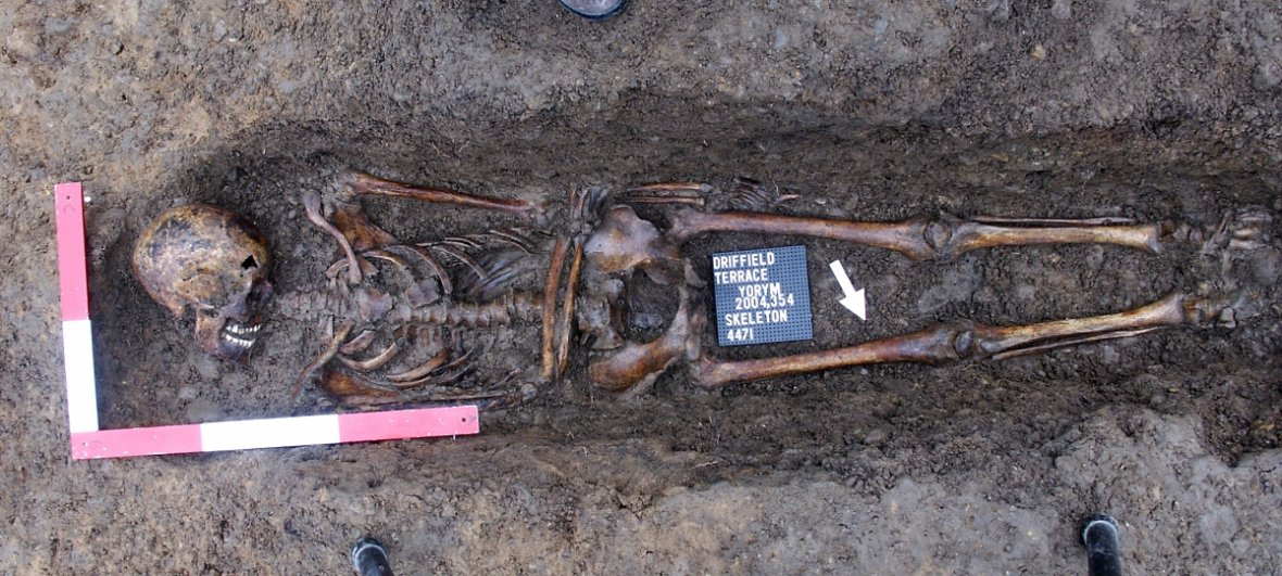 Archaeologists Found headless Roman Gladiator Skeletons were excavated from a Roman burial site in England