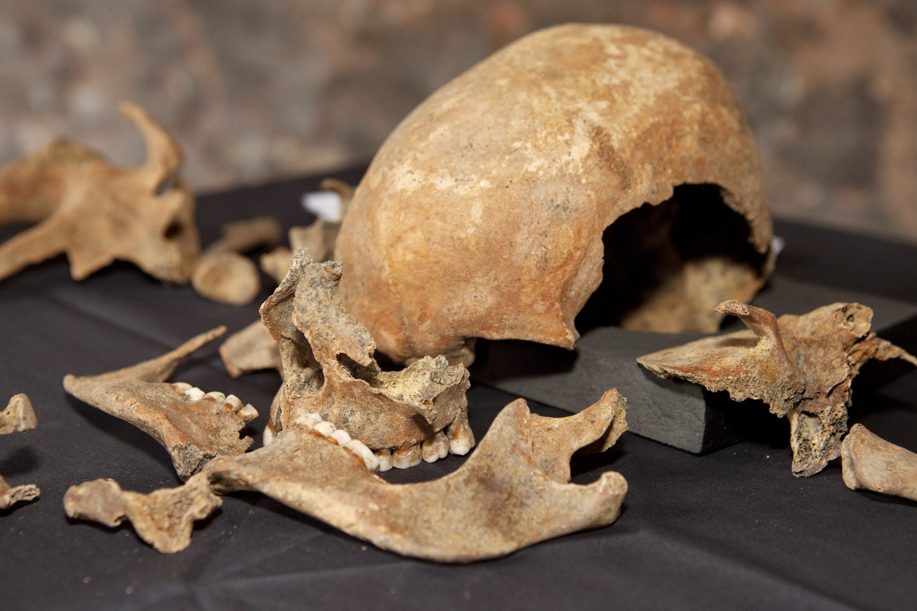 Archaeologist Discovered Medieval Britain Skeletons of Black Death victims during excavations for London Crossrail