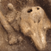 Archaeologists Find Something Truly Bizarre in an Isolated Medieval Graveyard