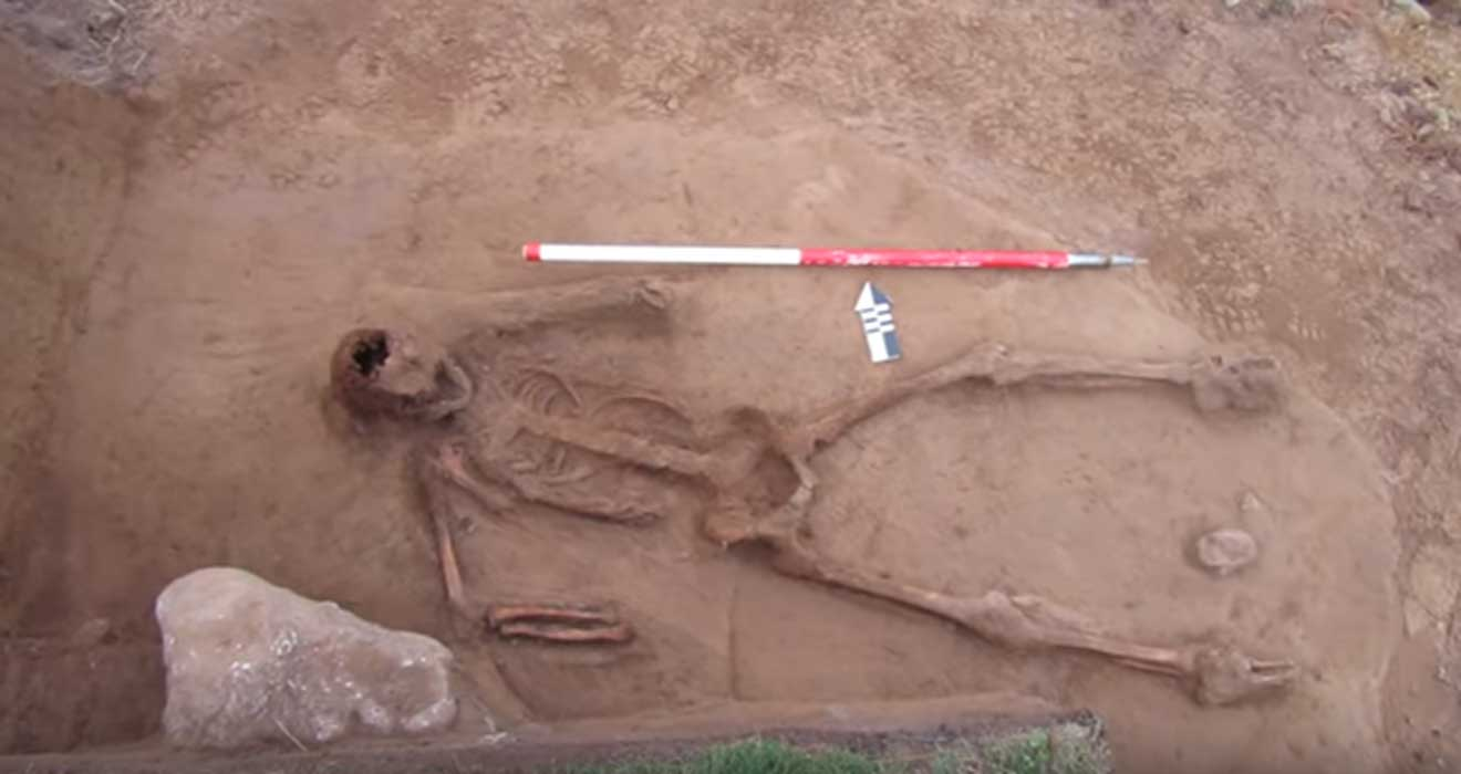 Bones of Handless Man Found Near Mysterious Medieval Dolphin Burial