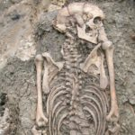 Half of the population were migrants to Sweden, according to analysis of the remains of 38 people who lived and died in the town during the 10th, 11th and 12th century