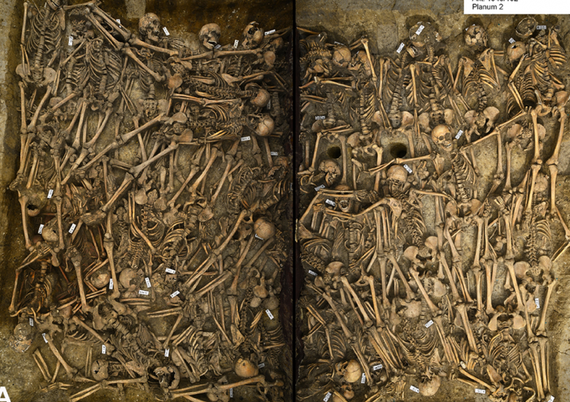 Mass Grave in Germany Shows Evidence of Deadly Cavalry Attack in Thirty Years War