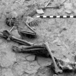 Skeletons of people killed in the massacre of Hasanlu's inhabitants around 800 B.C.E.