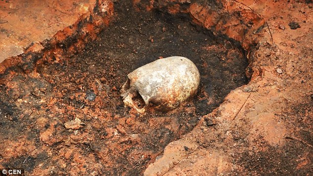 A skeleton with an unusual-shaped skull (pictured) has been unearthed on a site known as Russia's Stonehenge. UFO enthusiasts were quick to claim it was proof aliens visited earth when it was first found