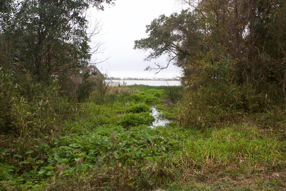 A wetland sits atop the remnants of an ancient Native American canal that once connected Little Lagoon and Oyster Bay