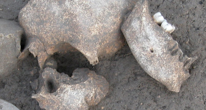 Embalmed Heads Show How Ancient Celts Celebrated Victory