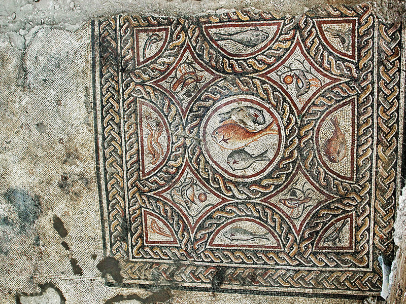 A depiction of a bird in the newly discovered Lod mosaic.