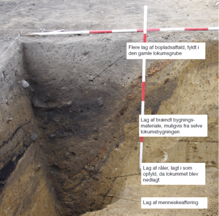 Is this Denmark's oldest toilet? Here you can see the various preserved layers. The lowest dark layer is human waste