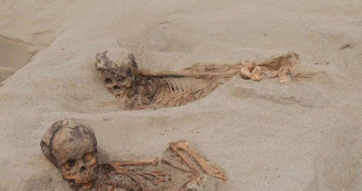 More than 140 children may have had their hearts removed in ancient sacrifice in Peru