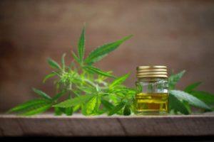 A cannabis leaf and a bottle of hemp oil.