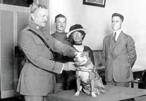 General John J. Pershing awards Sergeant Stubby with a medal in 1921.
