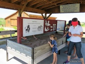 "Children play in a sandbox ""searching"" for fossils."