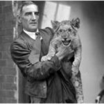 During the 18th century, you could pay your admission ticket to the zoo in London by bringing a cat or a dog to feed the lions.