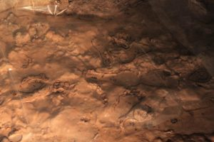 In this image, researchers used shiny sheets to help highlight the ancient human prints on the cave floor.