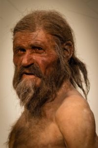 Reconstruction of Otzi the Iceman.