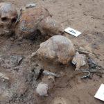 How volunteers near Berlin help excavate World War II mass graves