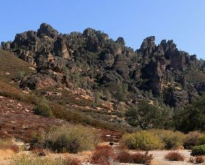 Pinnacles National Park, one of several condor release sites.