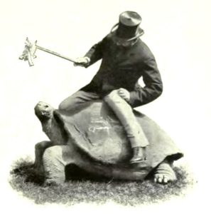 Walter Rothschild, cataloger of two Galápagos tortoise species