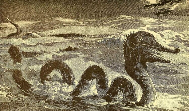 The Mysterious Sea Monsters of San Francisco Bay