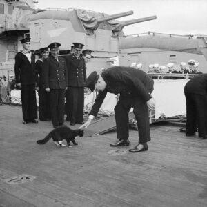 Blackie the cat and Churchill, 1941.