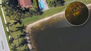 While using Google Earth, a former resident of this Wellington, Florida, home discovered what appeared to be a submerged car in a pond behind the house.