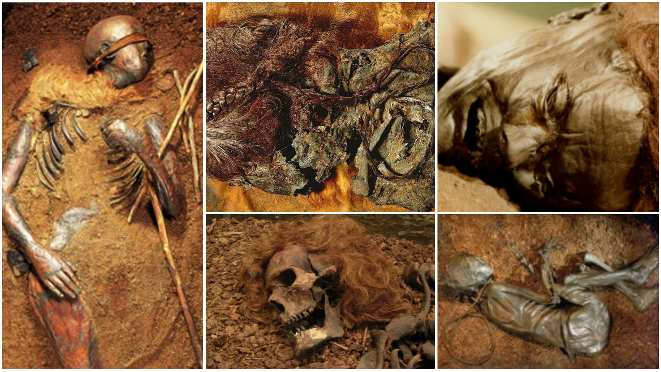 Europe's Famed Bog Bodies Are Starting to Reveal Their Secrets