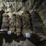 Archaeologists uncover dozens mummies in Egyptian necropolis