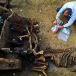 Archaeology breakthrough: 2,000-year-old Roman discovery offers major new insight into era