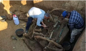 The find reveals the rituals wealthy people of the time carried out