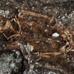 Mystery of 'feminine' skeleton found in the royal Celtic tomb