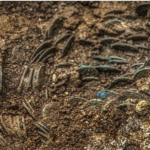 Farmer discovers huge hoard of more than 4,000 ancient Roman coins in Switzerland