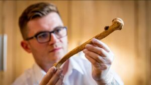 Historic Buildings Curator Alfred Hawkins with one of the bones, which were unearthed near a chapel at the Tower