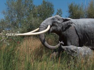 A model of a straight-tusked elephant foraging with its calf is pictured above