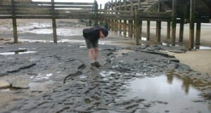 The sea has now washed away the prints – but not before they were recorded
