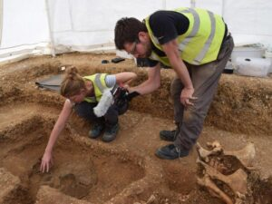 "The ""unique"" chariot burial with two ponies was discovered on a building site in Pocklington"