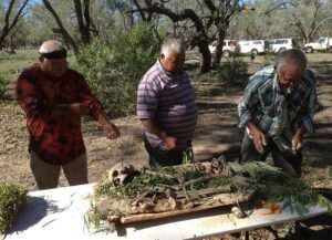 After its discovery in 2014 by William Bates, a member of the Baakantji, the skeleton was named 'Kaakutja,' meaning 'older brother.' Pictured above, three Barkindji men prepare the remains for reburial