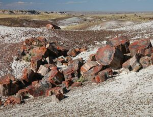 Petrified Forest National Park is another world-class tourist site in the area, straddling Interstate 10 about 70 or 80 miles east of Meteor Crater.
