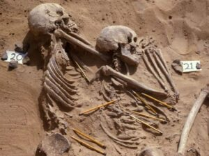 A pair of skeletons belonging to people who were killed on a massacre 13,000 years ago as the result of climate change is going on show in the British Museum, London. Pencils pinpoint out pieces of weaponry responsible for their demise
