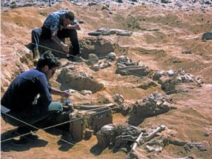 French scientists have been working with The British Museum to examine dozens of skeletons that were found grouped together in the Jebel Sahaba cemetery. An image of excavations at Jebel Sahaba