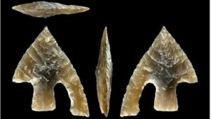 """This early Bronze Age flint arrow head was probably """"ritually broken"""" then placed on top of a body being buried"""