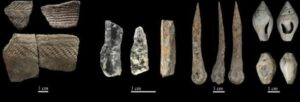 The Neolithic remains found in Cova Bonica Vallirana, Barcelona.