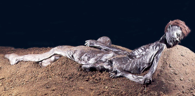 Archaeologist Discovered Grauballe man, a preserved bog body from the 3rd century B.C