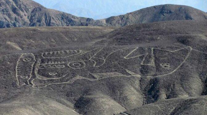Gigantic 2,000-Year-Old Killer Whale Geoglyph Found in Peru Desert