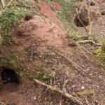 Knights Templar-linked underground tunnel complex dating back 700 years found beneath rabbit hole